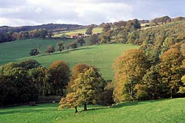 CPRE photo of English countryside